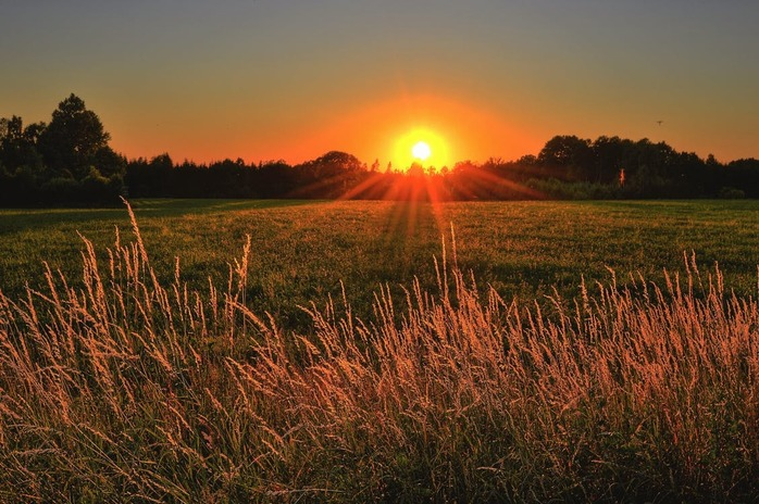 sunrise over a beautiful field